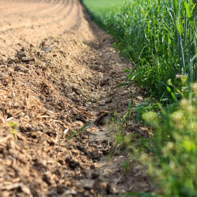 -Gegensatz in der Landwirtschaft-