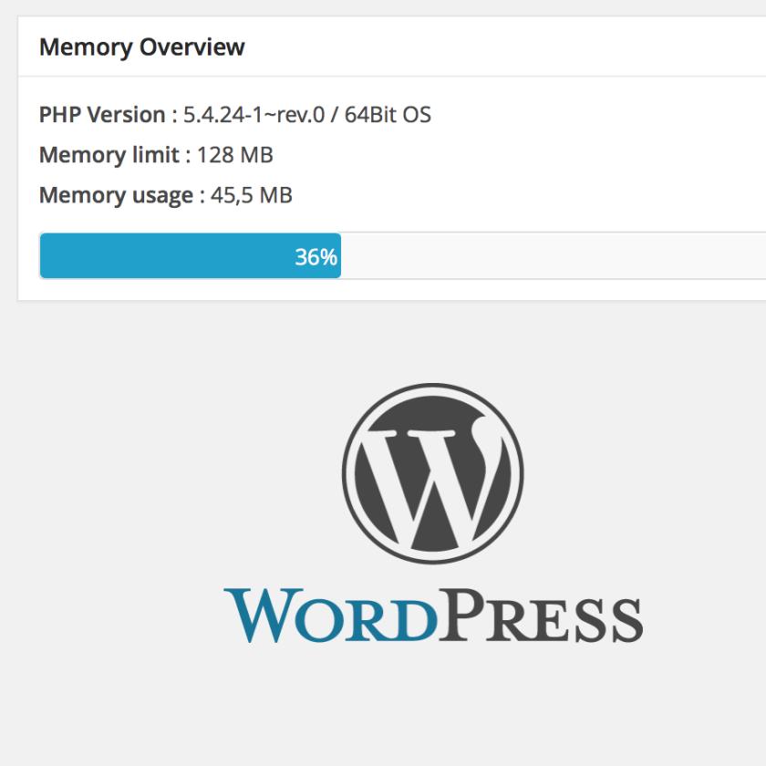 WordPress – Arbeitsspeicher reduzieren